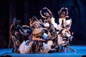 Билет на балет Жизель  Раду Поклитару